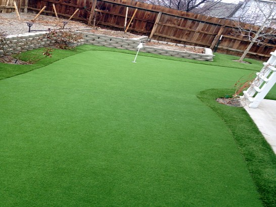Artificial Grass Photos: Artificial Grass Carpet Acton, California Backyard Playground, Backyard Design