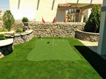 Artificial Grass Photos: Artificial Grass Carpet Inglewood, California Design Ideas, Beautiful Backyards