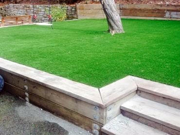 Artificial Grass Photos: Artificial Grass Lancaster, California Landscaping Business, Backyard Landscaping