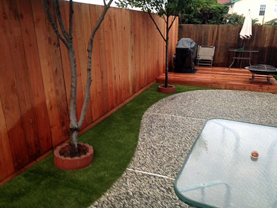Artificial Lawn Lake Los Angeles, California Pet Paradise, Backyard Ideas artificial grass
