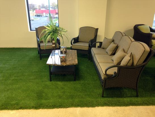 Artificial Turf Cost Downey, California Landscape Photos, Commercial Landscape artificial grass