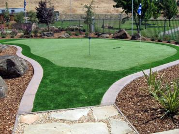 Artificial Grass Photos: Artificial Turf Cost Imperial, California Best Indoor Putting Green, Backyard Landscaping