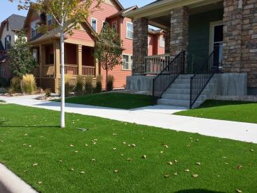 Artificial Turf Murrieta Hot Springs, California Landscape Ideas, Front Yard Landscape Ideas artificial grass