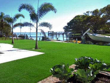 Artificial Grass Photos: Artificial Turf Paramount, California Lawn And Garden, Above Ground Swimming Pool