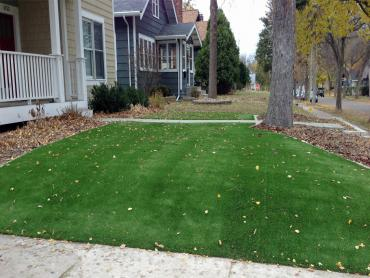 Artificial Grass Photos: Artificial Turf San Antonio Heights, California Garden Ideas, Front Yard Landscaping
