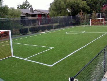Artificial Grass Photos: Best Artificial Grass Chino, California Stadium, Commercial Landscape