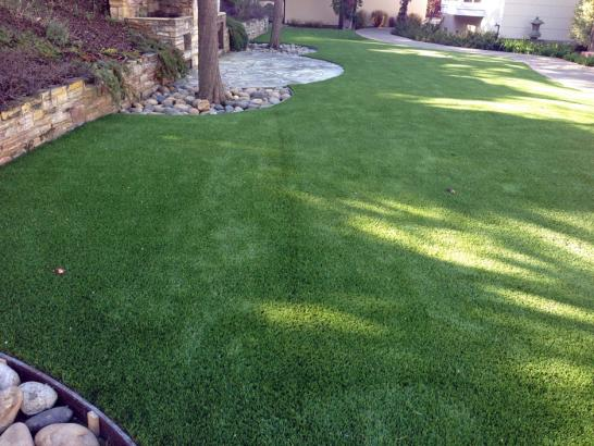 Artificial Grass Photos: Best Artificial Grass Loma Linda, California Cat Playground, Backyard