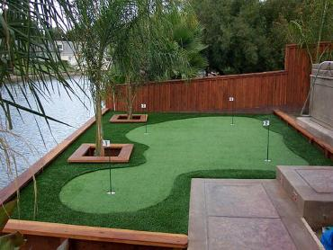 Artificial Grass Photos: Fake Grass Acton, California Landscape Design, Backyard Landscaping
