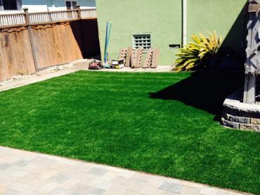 Artificial Grass Photos: Fake Grass Carpet Niland, California Drainage, Beautiful Backyards