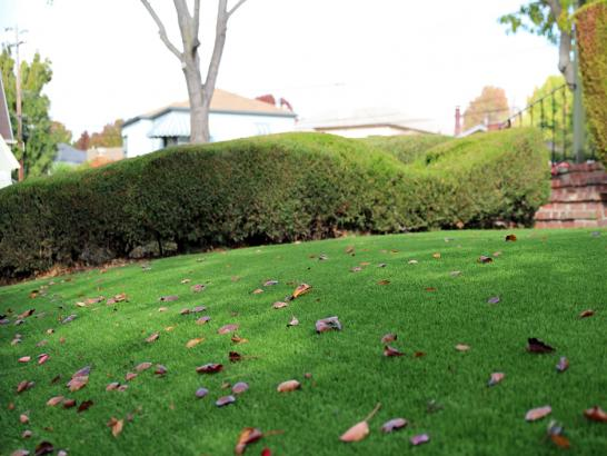 Artificial Grass Photos: Fake Grass Carpet West Carson, California Landscape Ideas, Front Yard Design