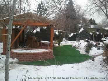 Artificial Grass Photos: Fake Grass Poway, California Landscape Photos, Backyards