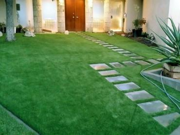 Artificial Grass Photos: Fake Lawn Poway, California Home And Garden, Front Yard Landscaping Ideas
