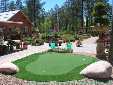 Artificial Grass Photos: Fake Turf Lake San Marcos, California Lawn And Garden, Small Backyard Ideas