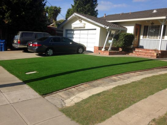 Artificial Grass Photos: Fake Turf Pine Valley, California Home And Garden, Landscaping Ideas For Front Yard
