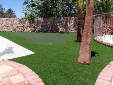 Artificial Grass Photos: Faux Grass Lenwood, California Best Indoor Putting Green, Backyards