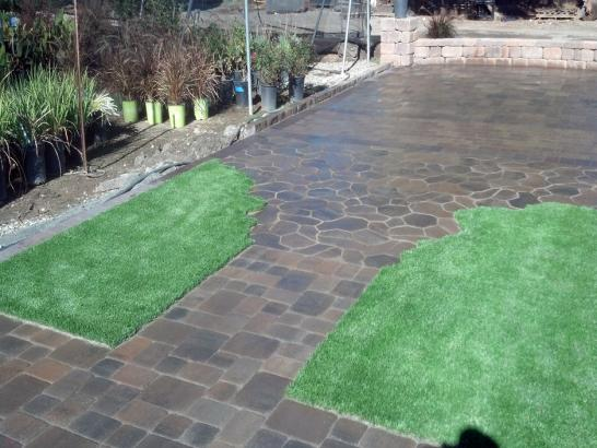 Artificial Grass Photos: Faux Grass View Park-Windsor Hills, California Landscaping, Backyard Landscaping Ideas