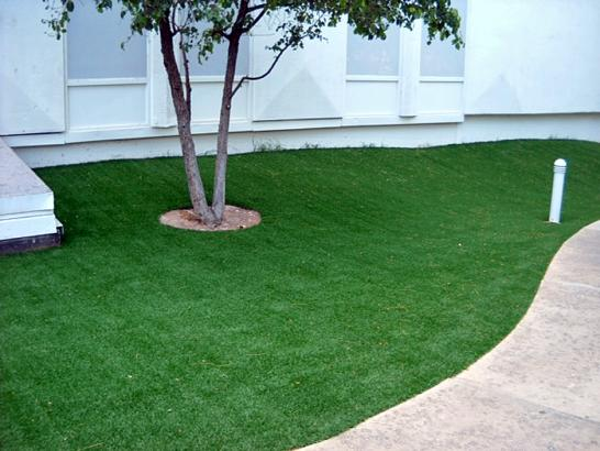 Artificial Grass Photos: Grass Carpet Grand Terrace, California Garden Ideas, Commercial Landscape
