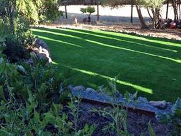 Artificial Grass Photos: Grass Carpet Malibu Beach, California Garden Ideas, Backyard Landscape Ideas