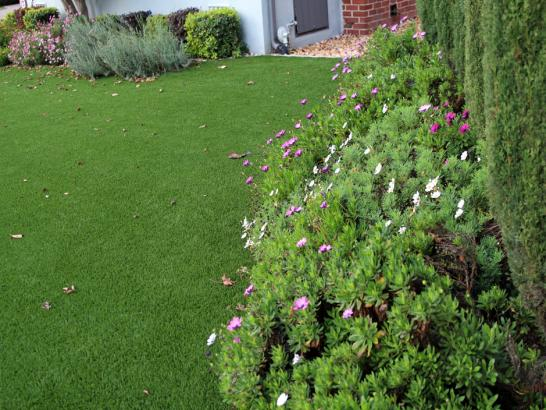 Artificial Grass Photos: Grass Carpet Redondo Beach, California Landscaping, Front Yard Landscaping Ideas