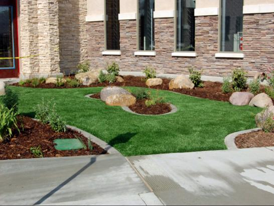 Artificial Grass Photos: Grass Carpet Sky Valley, California Garden Ideas, Commercial Landscape