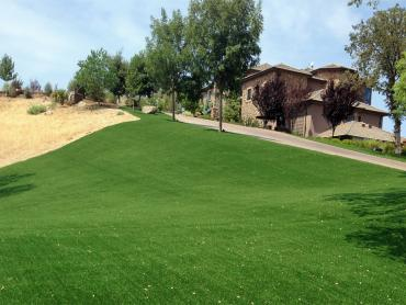 Artificial Grass Photos: Grass Installation Hawaiian Gardens, California Landscaping, Small Front Yard Landscaping