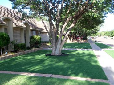 Grass Turf Charter Oak, California Landscape Ideas, Front Yard Landscaping artificial grass
