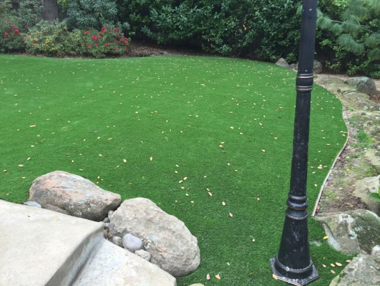 Artificial Grass Photos: Grass Turf Encinitas, California Landscaping, Backyard Design