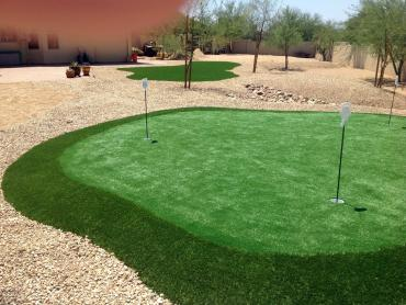 Grass Turf Rancho San Diego, California Diy Putting Green, Backyard Design artificial grass