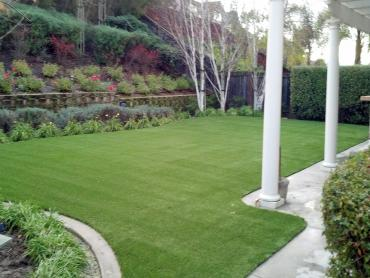 Artificial Grass Photos: How To Install Artificial Grass Alondra Park, California Landscaping, Backyard Landscaping Ideas