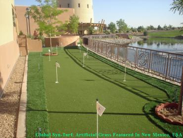 How To Install Artificial Grass Bonsall, California Design Ideas, Backyard Landscape Ideas artificial grass