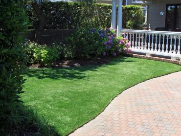 Artificial Grass Photos: How To Install Artificial Grass Sun City, California Rooftop, Front Yard