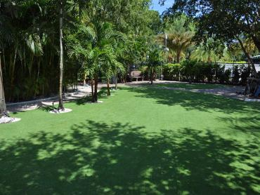 Artificial Grass Photos: Installing Artificial Grass Colton, California Lawn And Garden, Commercial Landscape