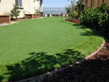Artificial Grass Photos: Lawn Services Rancho Mirage, California Design Ideas, Small Backyard Ideas