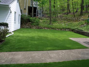 Artificial Grass Photos: Lawn Services West Rancho Dominguez, California Lawns, Front Yard Design