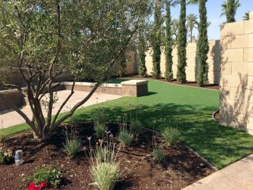 Artificial Grass Photos: Outdoor Carpet Anaheim, California Design Ideas, Small Backyard Ideas