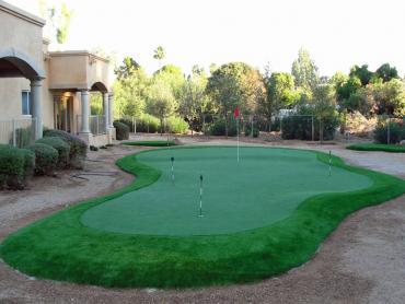 Artificial Grass Photos: Outdoor Carpet Belvedere, California Landscape Photos, Backyards