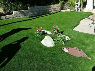 Artificial Grass Photos: Outdoor Carpet Rancho Santa Fe, California Landscaping, Landscaping Ideas For Front Yard