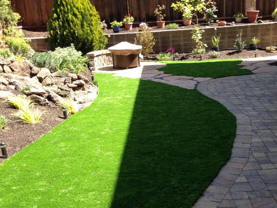Artificial Grass Photos: Plastic Grass Rancho San Diego, California Garden Ideas
