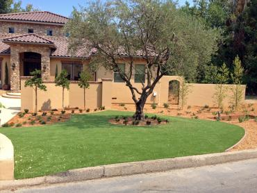 Artificial Grass Photos: Plastic Grass San Bernardino, California Paver Patio, Front Yard Design