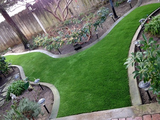 Artificial Grass Photos: Plastic Grass Westlake Village, California Lawn And Garden, Backyard Ideas