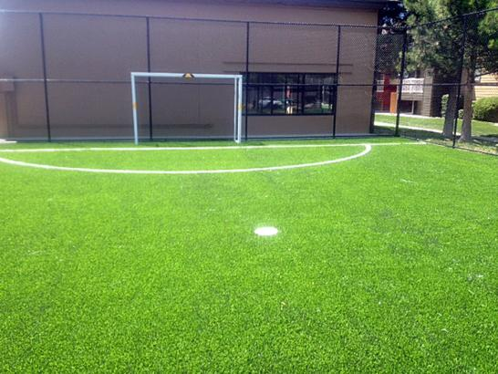 Artificial Grass Photos: Synthetic Grass Cost Artesia, California Home And Garden