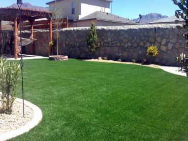 Artificial Grass Photos: Synthetic Grass Cost Ladera Heights, California Landscaping Business, Backyard Makeover