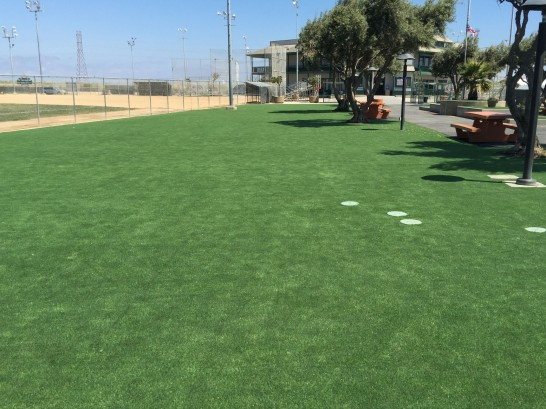 Synthetic Grass Cost Laguna Hills, California Design Ideas, Recreational Areas artificial grass