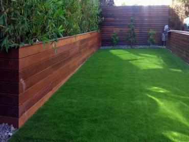Artificial Grass Photos: Synthetic Grass Cost Lytle Creek, California Design Ideas, Small Backyard Ideas