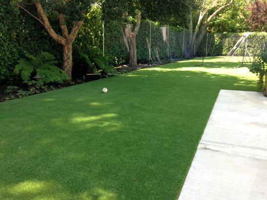 Artificial Grass Photos: Synthetic Grass Cost Mountain Center, California Roof Top