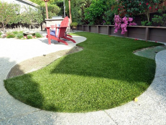 Artificial Grass Photos: Synthetic Grass Cost Solana Beach, California Dog Running, Backyard Design