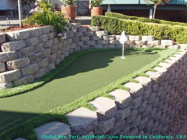Synthetic Grass Hidden Meadows, California Design Ideas, Backyard Landscape Ideas artificial grass