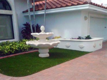 Artificial Grass Photos: Synthetic Lawn Foothill Ranch, California City Landscape, Front Yard Landscape Ideas