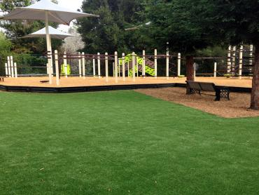 Artificial Grass Photos: Synthetic Turf Chatsworth, California Lacrosse Playground, Backyard Designs