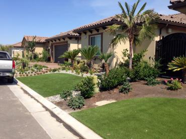 Artificial Grass Photos: Synthetic Turf National City, California Lawn And Garden, Front Yard Landscaping